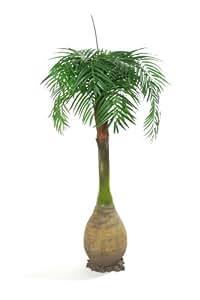 Mecanismo Artificial 213,36 cm 12,7 cm to Nature botella de palmera - seda Artificial Plant y rango de árbol Artificial
