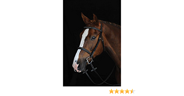 Details about  /Collegiate Essential Padded Raised Fancy Stitched Cavesson Bridle-Brown
