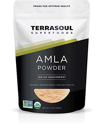 Terrasoul Superfoods Organic Amla Berry Powder (Amalaki), 12 Oz - Rich in Antioxidant Vitamin C | Supports Immunity