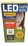 Deals n Sight Secret Light Bulb Home Diversion