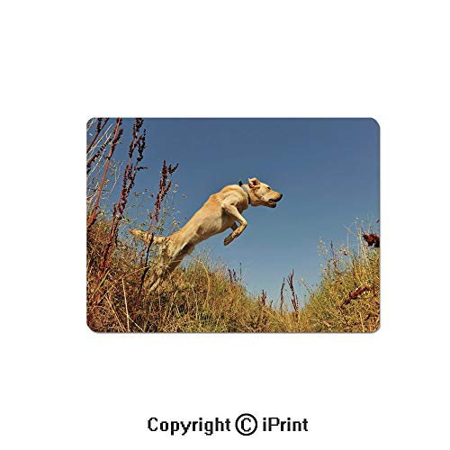 Large Gaming Mouse Pad Purebred Labrador Retriever Jumping in a Field Blue Sky Rural Outdoors Photo Decorative Extended Mat Desk Pad Mousepad Non-Slip Rubber Mice Pads 9.8