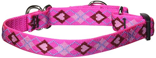 "LupinePet Originals 3/4"" Puppy Love 10-14"" Martingale Collar for Small Dogs"