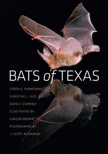Bats of Texas (W. L. Moody Jr. Natural History ()
