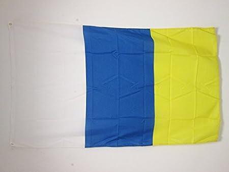 AZ FLAG Bandera de CANARIAS SIN Armas 90x60cm - Bandera Canaria 60 x 90 cm: Amazon.es: Hogar