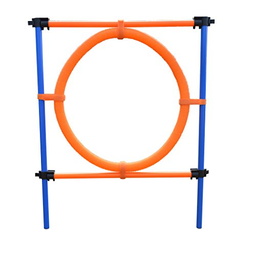 Funny-honey Outdoor Games Dog Training Agility Equipment For Dog And Animals Jump Hoop Set by Funny-honey