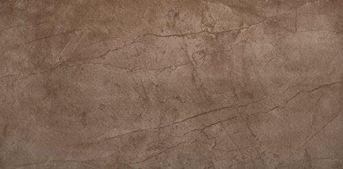 """Emser Tile F95CITABR1224 """"Citadel"""" Porcelain Tile, 12"""" x 24"""", Brown"""
