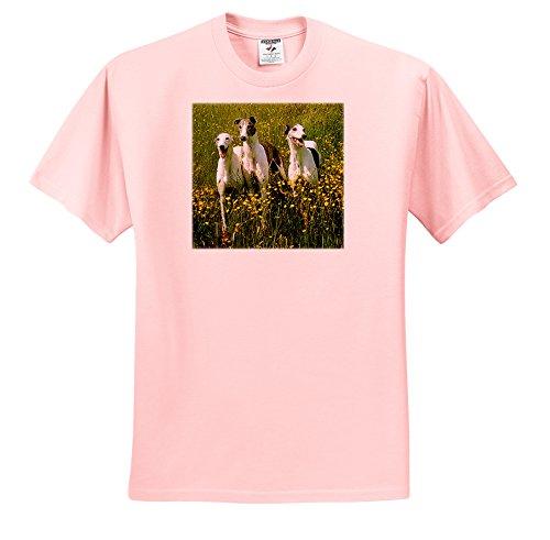 dogs-greyhound-greyhound-t-shirts-youth-light-pink-t-shirt-med10-12-ts-483-45