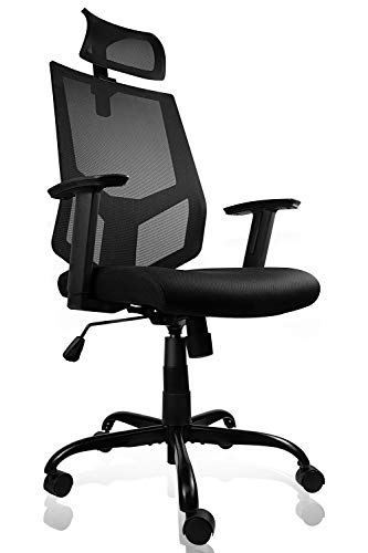 Smugdesk High Back Ergonomic Mesh Office Task Desk Chair with Adjustable Armrests and Headrest/Neck Support Dark Black