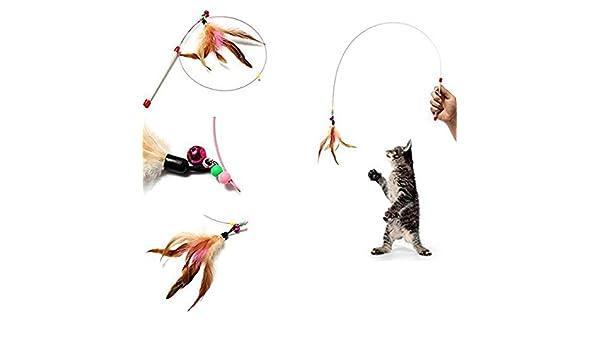 bed4fcdc42f0 Amazon.com : Dunnomart Pet cat Toy, Hot, Cute Design, Plastic, Steel ...