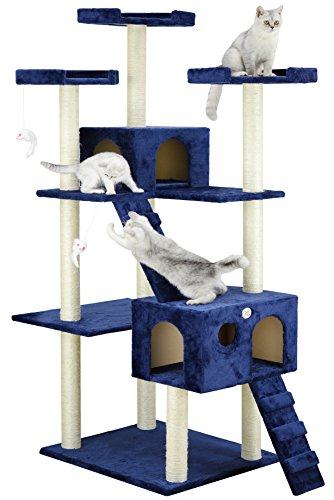Wood Condo Cat (Go Pet Club Cat Tree, 50W x 26L x 72H, Blue)