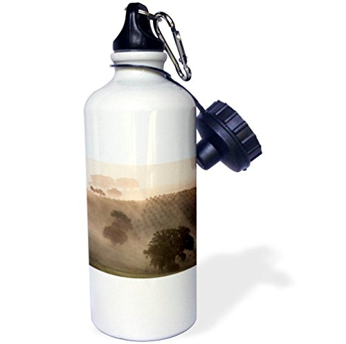 3dRose Danita Delimont - Agriculture - Italy, Tuscany. Fog drifts around vines and olive trees at sunrise. - 21 oz Sports Water Bottle (wb_277573_1) by 3dRose