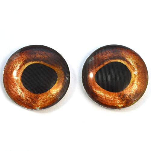 Animated Fish Glass Eyes Holographic Color Changing Cabochon Pair for Art Dolls, Sculptures, Props, Masks, Jewelry Making, Taxidermy, and More (30mm)