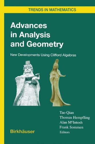 Advances in Critique and Geometry: New Developments Using Clifford Algebras (Trends in Mathematics)