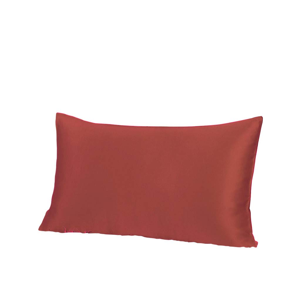 THXSILK 19 Momme Mulberry Silk Pillowcase for Hair and Skin-Pure Natural Silk on Both Sides, Envelope Closure, Hypoallergenic- Great for Child and Travel 12'' x 16'', Deep Red