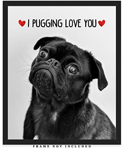I Pugging Love You Cute Pug Wall Art Print: (8x10) Unframed Poster Print - Great Gift Idea For a Significant Other or That Special Person in Your Life!