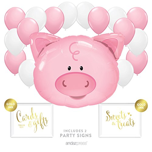 Andaz Press Balloon Party Kit with Signs, Farm Animal Baby Shower or Birthday, Pig with Pink and White Balloons, Hanging Decor, Hanging Decorations, 19-Piece Kit, Country BBQ Picnic -