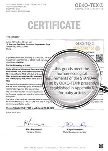 Amazon.com: Almohada para embarazo: Oeko-TEX 100 certificado ...