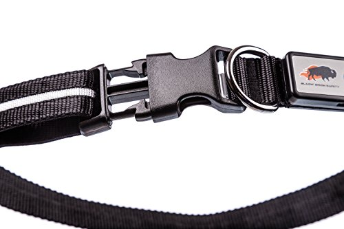 Pictures of Blazin' Safety LED Dog Collar – USB Black XSmall 4