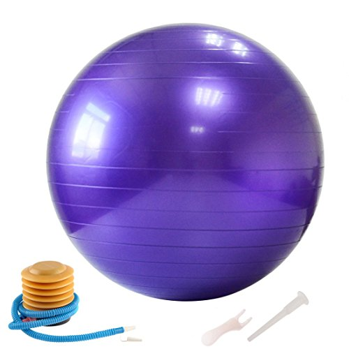 iTECHOR Exercise Ball 26IN Yoga Ball GYM Balance Stability Fitness Ball with Air Pump - Purple