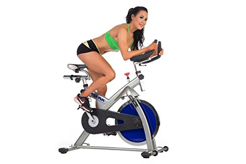 ASUNA 4100 Commercial Indoor Cycling Bike, Gray