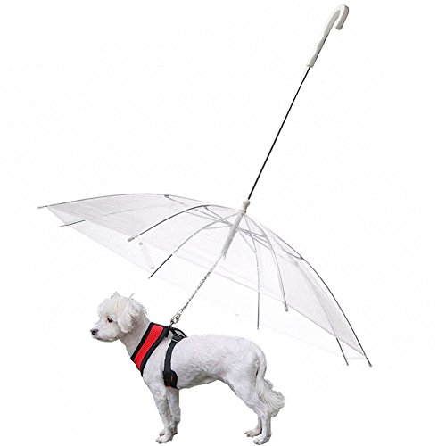 (Folding Puppy Pet Dog Raincoat Assembly With Leash Chain Walking Snow Rain Transparent Umbrella Poncho-Fits 20