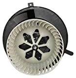 TYC 700182 Volkswagen Passat Replacement Blower Assembly