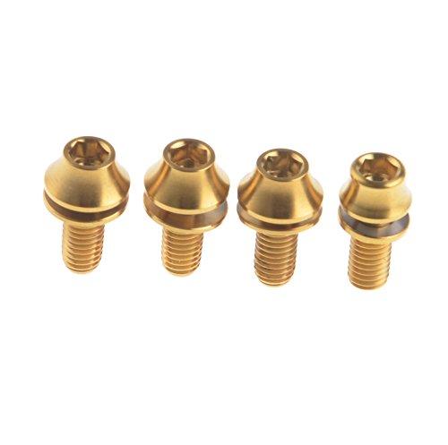 314dbd992e confezione da 4 WYIFA Titanium M5 x 12 mm con rondelle per  bottiglie-Bulloni esagonali