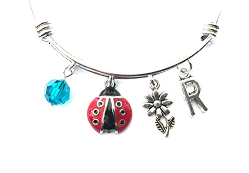 Ladybug themed personalized bangle bracelet. Antique silver charms and a genuine Swarovski birthstone colored element.