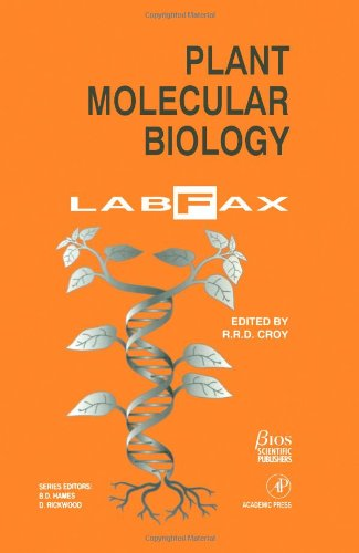 Plant Molecular Biology LabFax (Labfax Series)