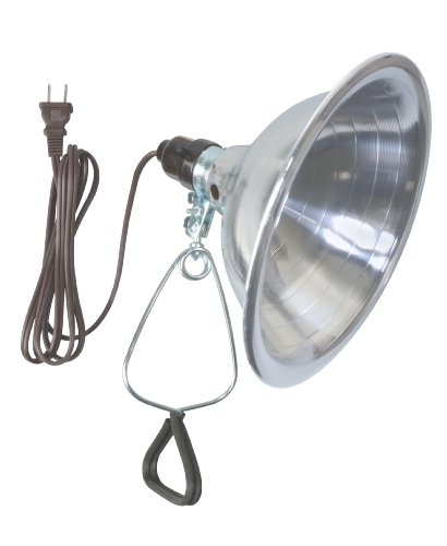 Woods 0151 18/2 SPT-2 Clamp Lamp Light w/ 8.5-Inch Reflector, 150-Watt, 6-Foot Cord