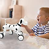 Pet Robot Dog Walks, Barks, Plays Music, Follows