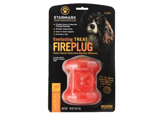 Everlasting Fire Plug Medium ()
