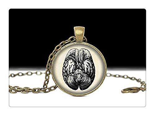 Pink rose Brain Necklace ,Anatomy Jewelry ,Brain Jewelry ,Anatomy Necklace]()