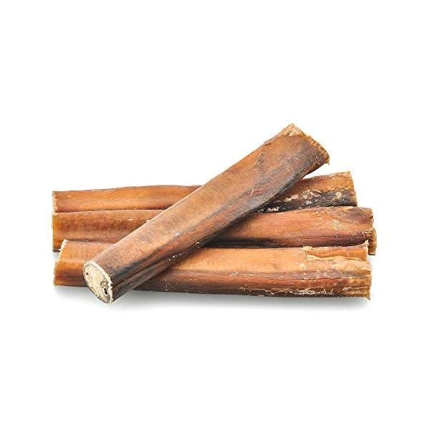 Best Bully Sticks Premium 6-Inch Jumbo Bully Sticks - All-Natural, Free-Range, Grass-Fed, 100% Beef Single-Ingredient Dog Chews 3