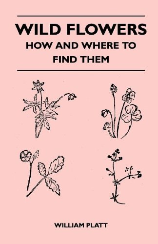 Wild Flowers - How and Where to Find Them ebook