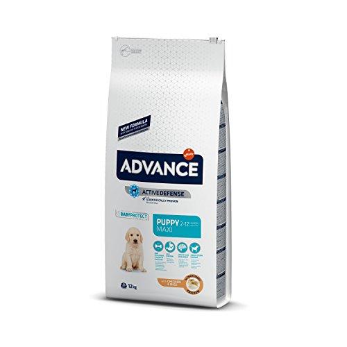 Advance Advance Pienso para Perro Maxi Puppy con Pollo – 12000 gr