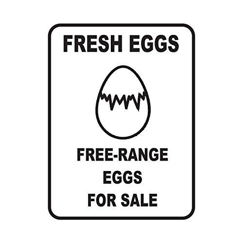 Organic Free Range Eggs - 3