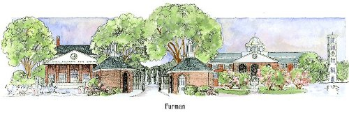 Furman University - Collegiate Sculptured Ornament by Sculptured Watercolor Ornaments