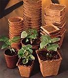 "10 Burpee Seed Starting 3"" Square Peat Pots"
