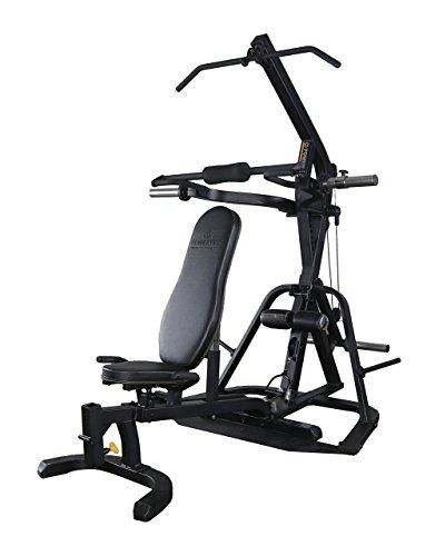 Powertec Fitness Lever Gym Work Bench, Black