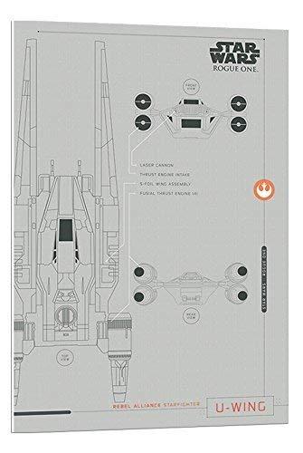 Star Wars Rogue Uno u-wing Planes Póster de flotador montado – 90 x 60