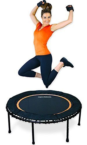 Leaps and ReBounds Bungee Rebounder Home Mini Trampoline