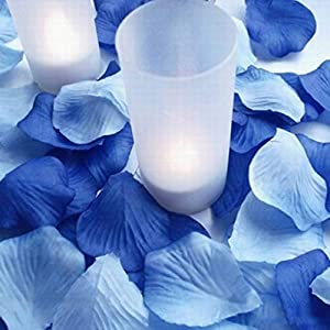 Petal Pink - S Charming 10 Pack Blue Silk Rose Petals Artificial Flowers Wedding Decoration - Large Peony Jwellery 50pcs Daisy Bouquet Black Clips Look Hanging Calla Hair Table Outdoors Multi 70