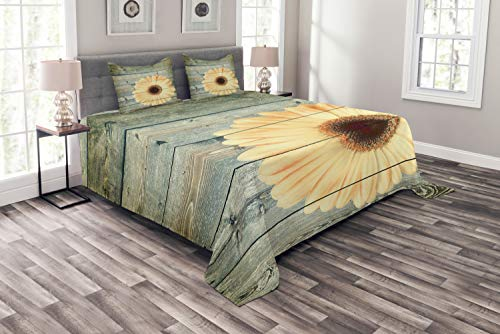 - Lunarable Sunflower Bedspread Set Queen Size, Rustic Wooden Planks with Sunflower Floral Oak Tree Daisy Gerbera Country, Decorative Quilted 3 Piece Coverlet Set with 2 Pillow Shams, Grey Pale Yellow