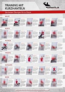 Training mit Kurzhanteln - Das große XXL-Übungsposter mit den 30 besten Übungen
