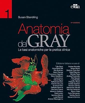 Anatomia del Gray 41 ed.: 2 Volumi eBook: Susan Standring: Amazon.es ...