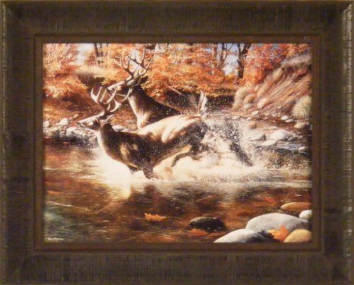 On The Run by Kevin Daniel 17x21 Whitetail Deer Buck Water Framed Art Print Wall Décor Picture