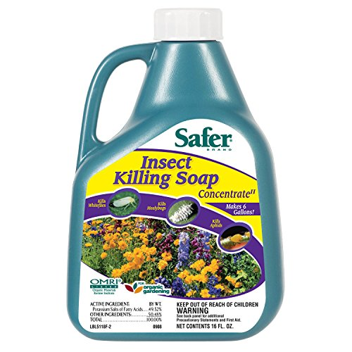 Price comparison product image Safer Brand 5118 Insect Killing Soap - 16-Ounce Concentrate