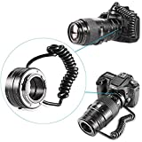 Neewer Multifunctional Electronic Automatic AF Auto Focus Macro & Reverse Mount On Lens Extension Tube with 58mm 67mm 72mm 77mm Adapter Rings for Canon EF/EF-S Mount Lenses, Fits Canon EOS 5D Mark 3 III 5D Mark 2 II 1Ds Mark IV III II I 1D Mark III II N II I 6D 7D 10D 20D 20Da 30D 40D 50D 60D 60Da 70D 100D 300D 350D 400D 450D 500D 550D 600D 650D 700D 1000D 1100D 1200D Rebel SL1 XT XTi XS XSi T
