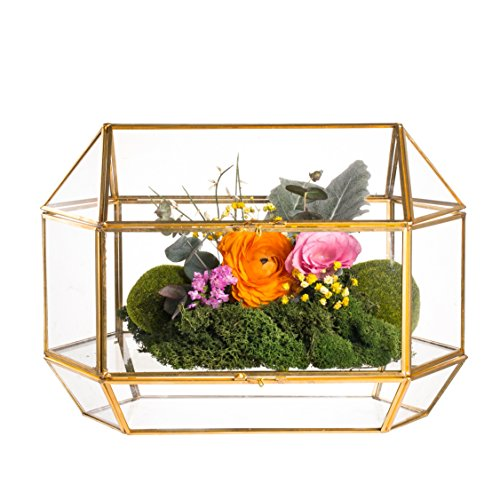 NCYP Large Geometric Glass Wedding Card Box Keepsake Recipe Reception Card Envelope Holder Display Gift Card Box with Swing Lid